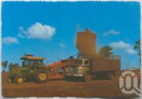 "<span class=""caption-caption"">Bulk harvester-thresher tipping the crop into a waiting truck ready for transport to the silos, Kingaroy</span>, c1970-2000. <br />Postcard, collection of <span class=""caption-contributor"">Murray Views Collection</span>."
