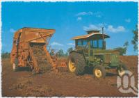 "<span class=""caption-caption"">After the harvest the peanuts are put through the thresher that picks up the crop and separates the peanuts from the stubble, Kingaroy</span>, c1970-2000. <br />Postcard, collection of <span class=""caption-contributor"">Murray Views Collection</span>."