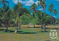 "<span class=""caption-caption"">Seaforth Park, with its many trees and coconut palms swaying in the breeze</span>, c1970-2000. <br />Postcard, collection of <span class=""caption-contributor"">Murray Views Collection</span>."