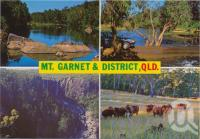 "<span class=""caption-caption"">Mt Garnet & District, Blencoe Creek, Cashmere Crossing, The Herbert River, Blencoe Falls, Kirrama Range, Cattle grazing near Cashmere Crossing</span>, c1970-2000. <br />Postcard, collection of <span class=""caption-contributor"">Murray Views Collection</span>."