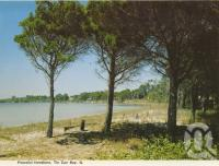 "<span class=""caption-caption"">Peaceful foreshore, Tin Can Bay</span>, c1979. <br />Postcard folder by <span class=""caption-publisher"">Murray Views Pty Ltd</span>, collection of <span class=""caption-contributor"">Centre for the Government of Queensland</span>."
