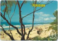 "<span class=""caption-caption"">The beach, looking south, Peregian Beach</span>, c1970-2000. <br />Postcard, collection of <span class=""caption-contributor"">Murray Views Collection</span>."