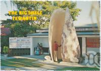 "<span class=""caption-caption"">The Big Shell, Tewantin</span>, c1970-2000. <br />Postcard, collection of <span class=""caption-contributor"">Murray Views Collection</span>."