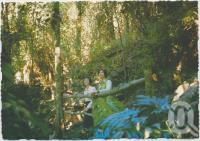 "<span class=""caption-caption"">The Grotto, Rainforest Tourist Park, High Tor, Maleny</span>, c1970-2000. <br />Postcard, collection of <span class=""caption-contributor"">Murray Views Collection</span>."